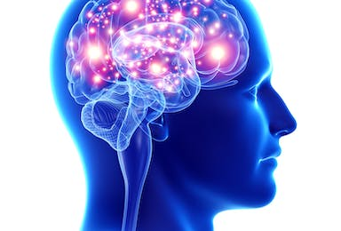 Neuroplasticity and Neurological Disorders