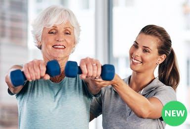 Improving Geriatric Posture, Core Strength, and Balance