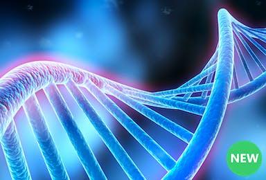 Treating Disease Through Genetics