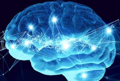 Neuroplasticity and TBI