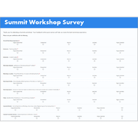 Summit Survey